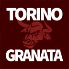 www.torinogranata.it